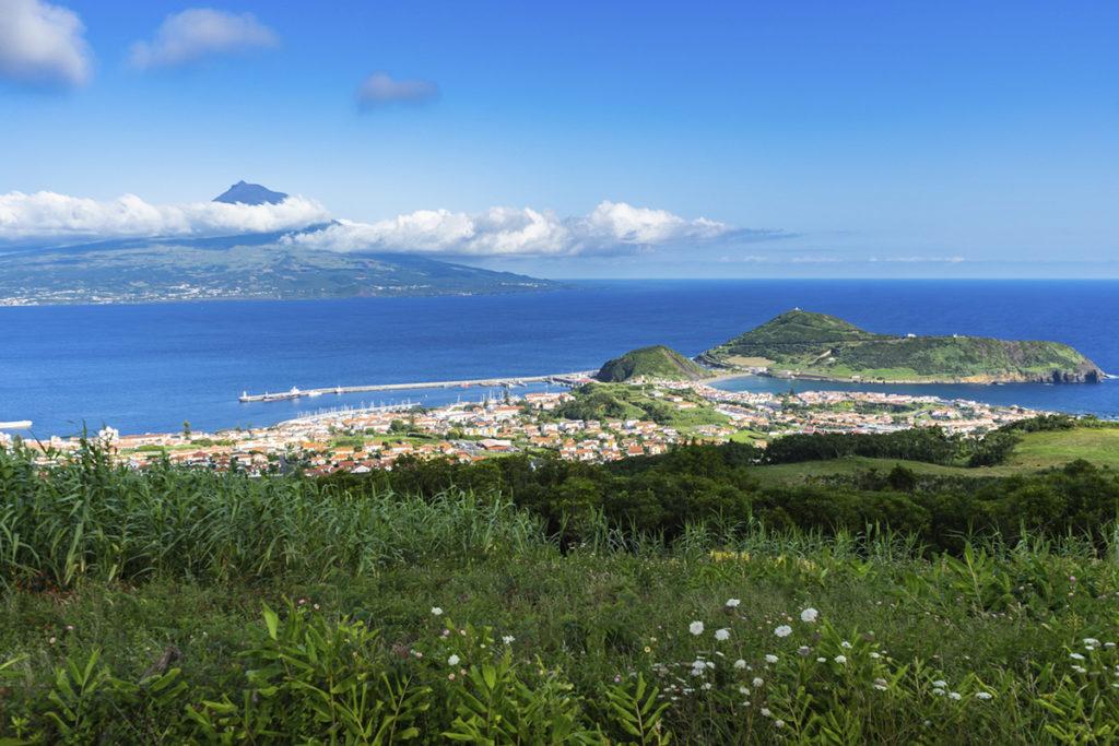 Isla de Faial, en esta isla son los macizos de hortensias en diversos tonos de azul, or esta razón Faial es llamada la Isla Azul. (iStock)