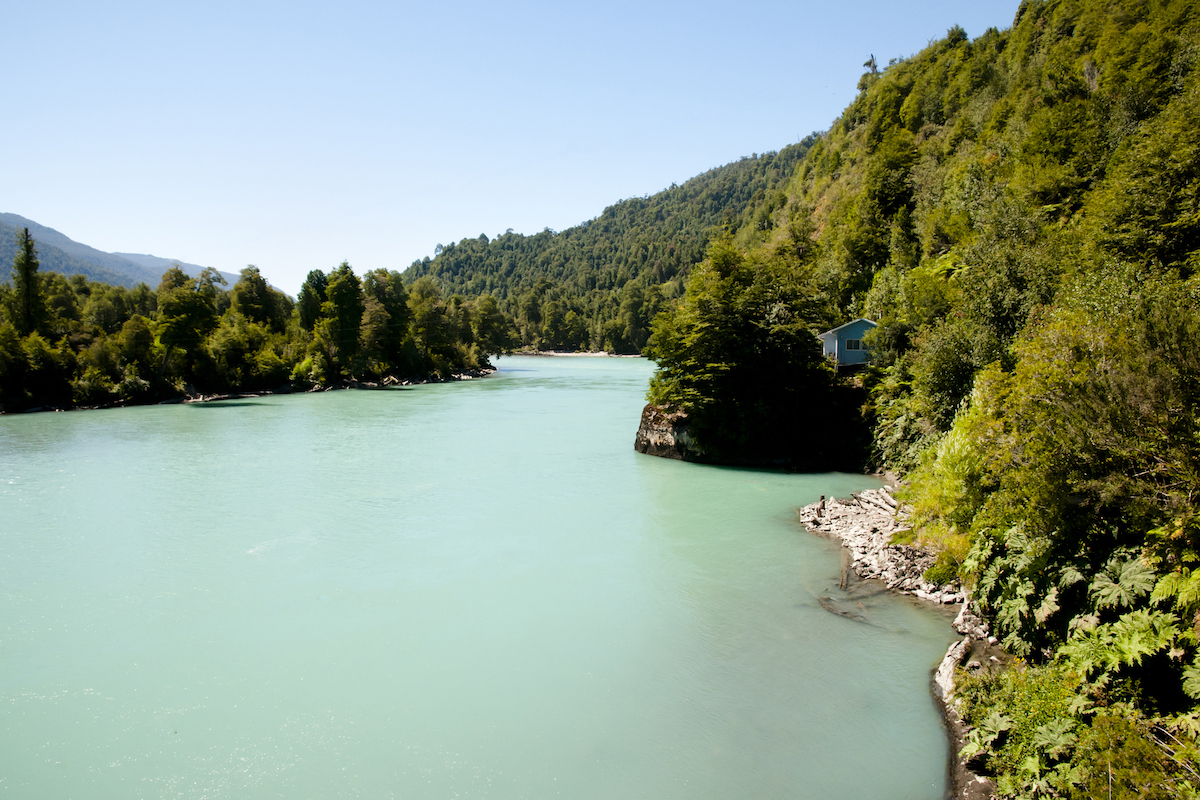 El 5% de la biodiversidad del mundo se encuentra en Corcovado, Costa Rica (iStock).