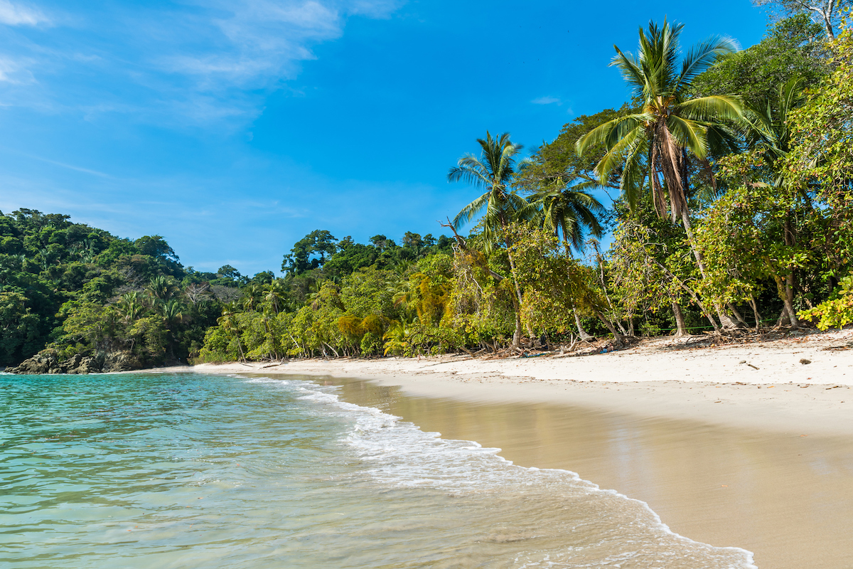 La playa de Manuel Antonio se encuentra dentro del parque nacional que lleva el mismo nombre (iStock).