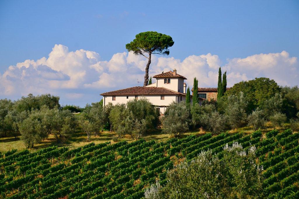 La Toscana está repleta de viñedos (Pixabay)