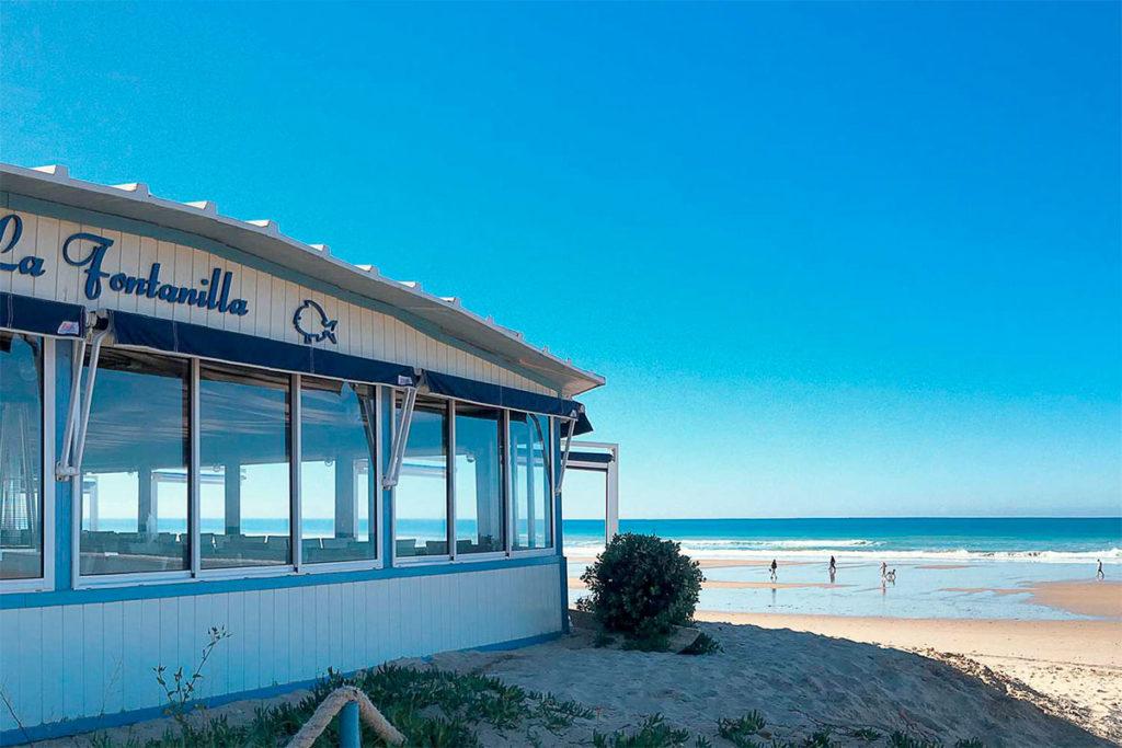 Los mejores pescados autóctonos los degustarás en La Fontanilla (lafontanilla.com)