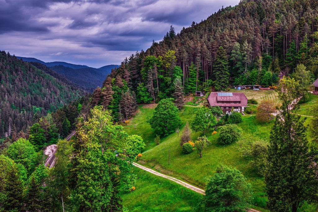 La Selva Negra es uno de los atractivos naturales de Alemania más espectaculares (iStock)